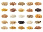picture of millet  - Cereals collection isolated on white background - JPG