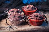 Halloween cupcakes for Halloween party