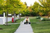 image of tricycle  - Young boy walking the dog with his tricycle on the nicely cut grasses in their neighborhood - JPG