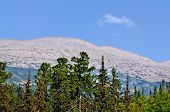stock photo of ural mountains  - One of the elevations of the mountain range Kvarkush in the Ural Mountains - JPG