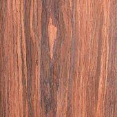 Walnut Wood Grain , Tree Background