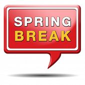 spring break holliday or school vacation icon or button