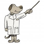 An image of a dog veterinarian.