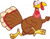 Happy Turkey Bird Cartoon Character Running
