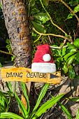 Pointer To The Diving Center Cristmas Hat