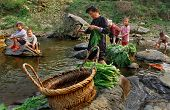 Asian Women With Children On A Rural River, Wash Lettuce.