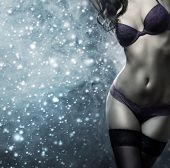 image of cabaret  - Body of young and beautiful woman in sexy lingerie over the snowy winter background - JPG