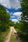 Empty path in nature with couds in blue sky