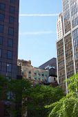 NYC Skyscrapers Portrait