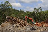 KUCHING, MALAYSIA - APRIL 27 2014: Deforestation. Photo of tropical rainforest in Borneo being destr