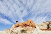 Toadstool-Red Rock Hoodoo
