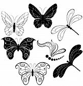 Silhouettes Of Butterflies And Dragonflies