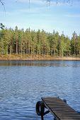 Old Jetty At Calm Lake
