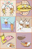 Roach Scenes