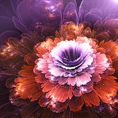 Abstract Flower, Computer Generated Graphic