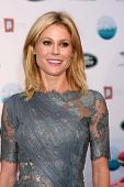 LOS ANGELES - APR 25:  Julie Bowen at the 2014 LA Modernism Show Opening Night at 3Lab on April 25,
