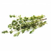 Food  Ingredient - Fresh Thyme