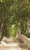 Parkway