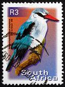Postage Stamp South Africa 2000 Woodland Kingfisher, Bird