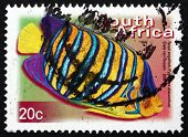 Postage Stamp South Africa 2000 Royal Angelfish, Marine Fish