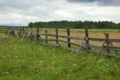 Old wooden fence in the field