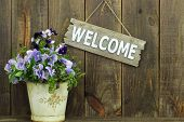 Welcome sign by pot of purple flowers (pansies)