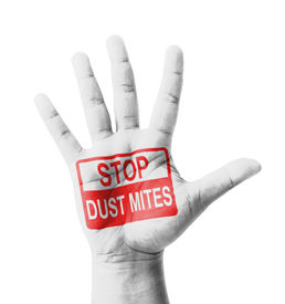 picture of dust mite  - Open hand raised Stop Dust Mites sign painted multi purpose concept  - JPG