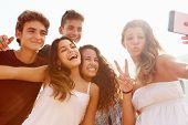 Group Of Teenage Friends Dancing And Taking Selfie