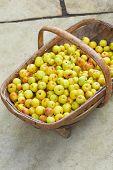 Crab Apples In Wooden Basket