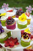 Multicolored Summer Cupcakes