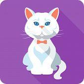 Vector White British Cat Icon Flat Design