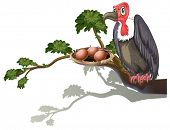 Illustration of a vulture guarding eggs