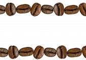 Coffee Bean Isolated