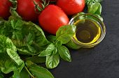 Tomatoes, Fresh Basil Leaves And Olive Oil. Healthy Food