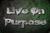 Live On Purpose Concept