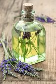 Bottle Of Lavender Oil With Fresh Flowers. Healthy Herbs