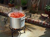 Crawfish Boiling