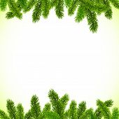 Green Christmas tree branches vector frame