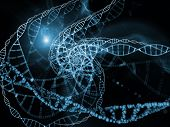 Evolving Microcosm