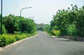 Treelined Path Of Rajasthan, India