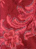Velvet Drapery Embroidered