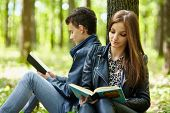 Teenagers Studying Together Outdoor