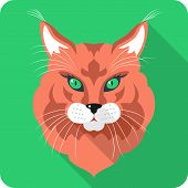 Vector Cat Maine Coon Icon Flat Design