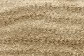 Texture Quilted Batting Sand Color