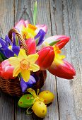 picture of purple iris  - Bunch of Yellow Daffodils Magenta Tulips Purple Irises in Wicker Basket with Colored Easter Eggs closeup on Rustic Wooden background - JPG