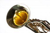 Tuba Euphonium Isolated On White