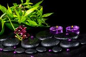 Spa Concept Of Flower Orchid, Phalaenopsis, Zen Basalt Stones With Drops, Lilac Candles, Beads And B