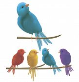 Colorful Birds On A Branch. Vector Illustration