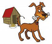 Vector Funny Cartoon Dog