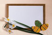 Easter eggs, daffodils and wooden frame